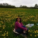 Erholung auf der Blumenwiese