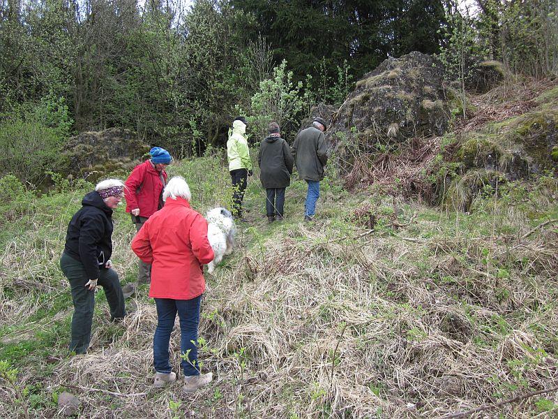 Wanderung zu den Dicken Steinen im April 2017